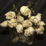 Dead Roses for A Dying Planet_Photograpg-13Hx13W