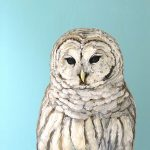 Snow Owl, 2015 oil on panel, 13x13in