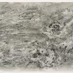Anne_Novado_Biomorphic Fusion_10x20_drawing