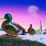 Arthur Paxton_Mean Mallards & Stranded Steamboat_18x24in framed_archival pigment print_2015